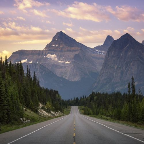 Image for How Many Days Do You Need in Jasper National Park?