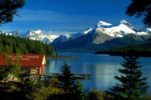Maligne Valley Sightseeing Tour