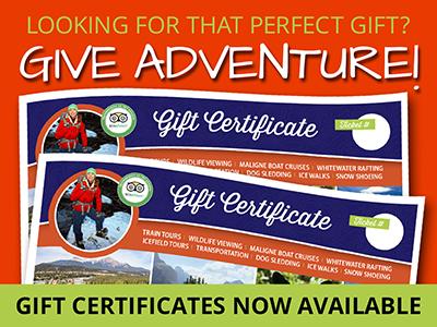 Gift Certificates Sundog